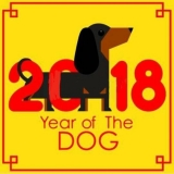 Wondering What 2018 Year Of The Dog Holds, Especially For Women?
